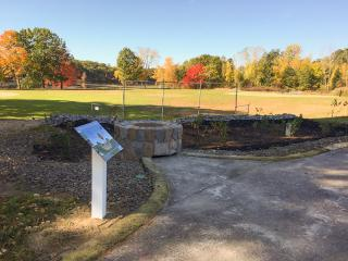 Picture of Rain Garden at Pirone Park